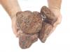 Gerundete (getrommelte) Steine aus Granit, Vanga (nass) für Gabionen