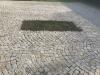 Kostka granitowa (polski mrozoodporny granit), szaro-żółta, średnioziarnista, łupana