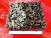 Kora łupkowa 20-40 mm (kamienie suche i  mokre)