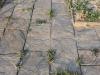 Łupek szarogłazowy - ścieżki z łupka czterostronnie ciętego
