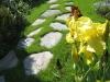 Łupek szarogłazowy - ścieżki z łupka