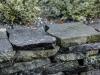 Polygonalplatten aus Serpentin - Serpentinit