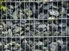 Eckige Steine aus Serpentin - Serpentinit für Gabionen